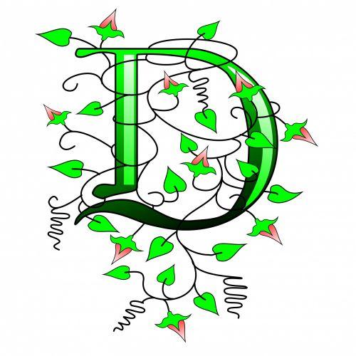 Ivy Capital Letter D