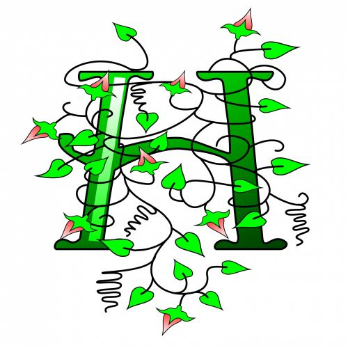 Ivy Capital Letter H