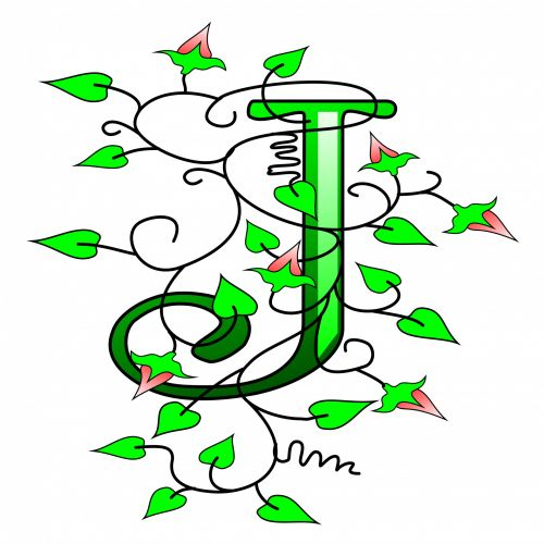 Ivy Capital Letter J