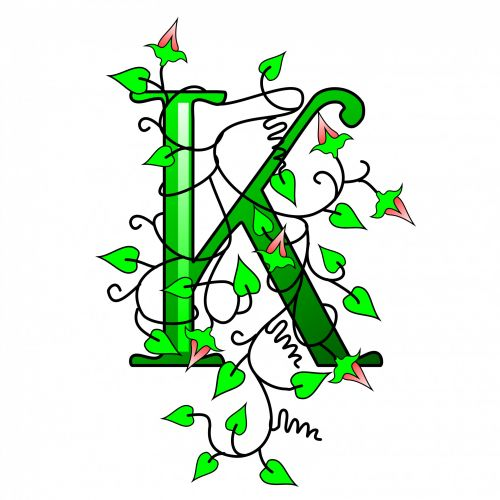 Ivy Capital Letter K