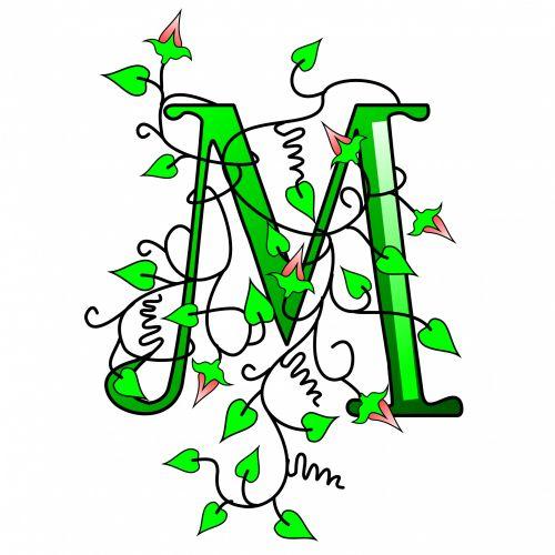 Ivy Capital Letter M