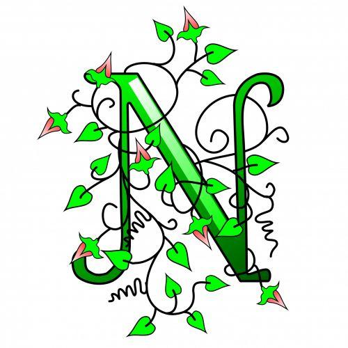 Ivy Capital Letter N