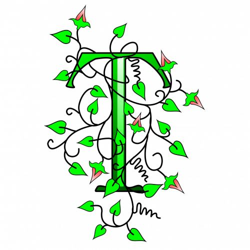 Ivy Capital Letter T