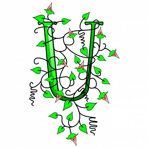 Ivy Capital Letter U