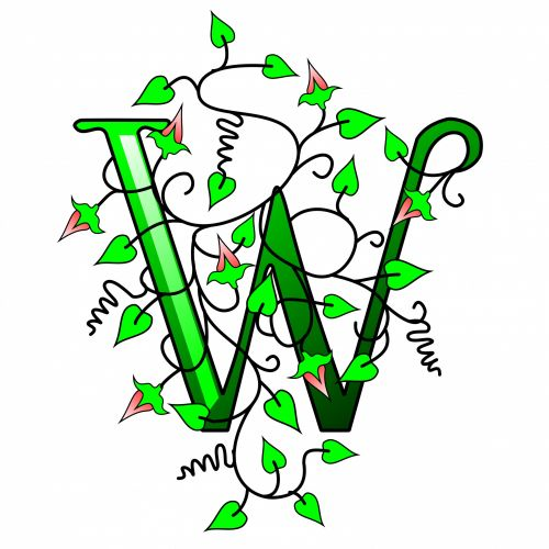 Ivy Capital Letter W