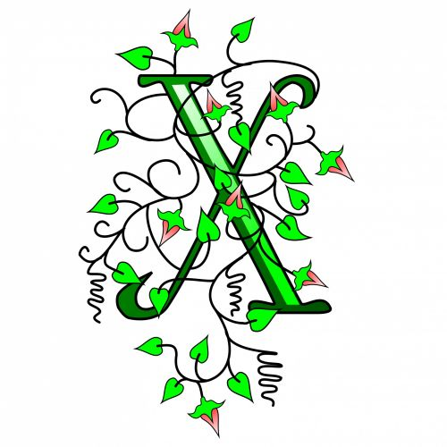 Ivy Capital Letter X