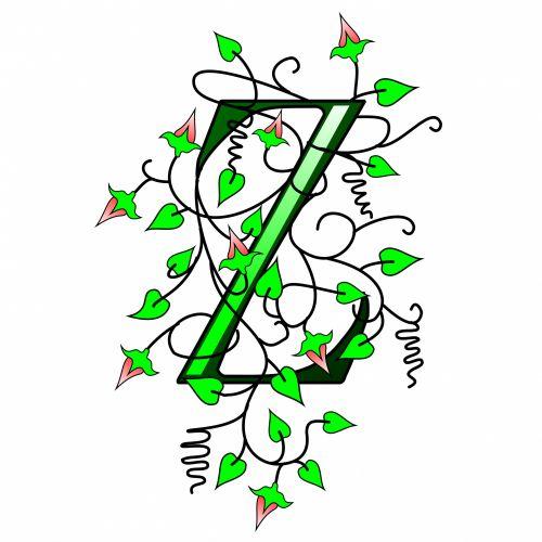 Ivy Capital Letter Z