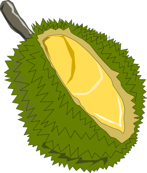 jackfruit,fruit,exotic,soursop,jack tree,jack,jak,annona muricata,artocarpus heterophyllus,green,prickly,spiny,spiky,barbed,thorny,bristly,free vector graphics