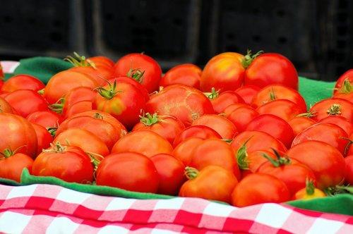 jackson hole market tomatoes  tomatoes  vegetables