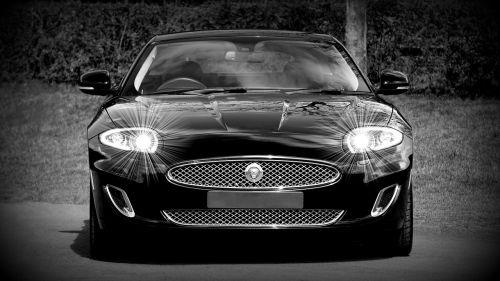 jaguar car vehicle