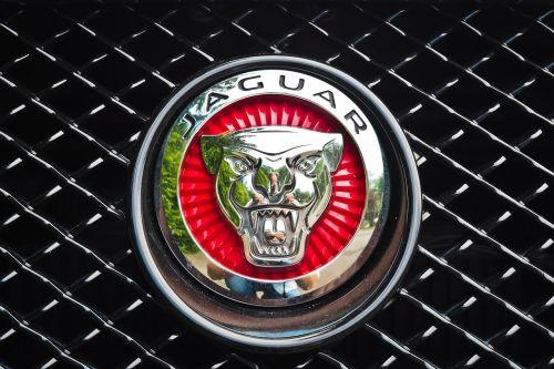 jaguar auto automotive