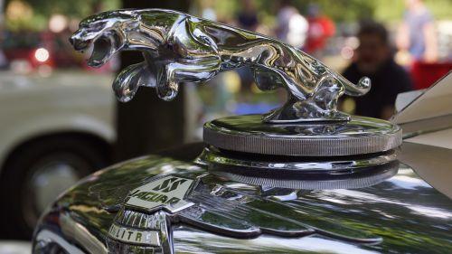 jaguar old cars oldtimer