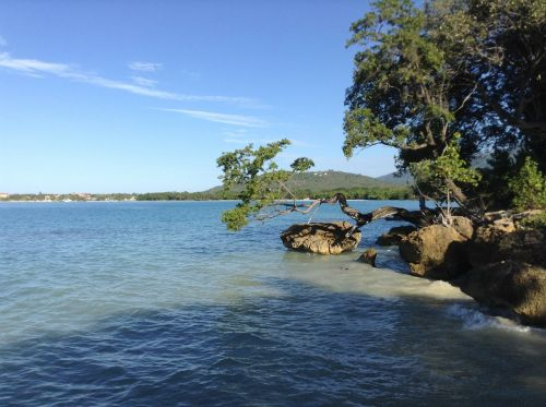 jamaica cove ocean