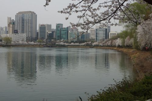 jamsil songpa seokchon lake