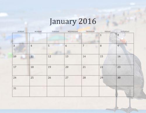 January 2016 Beach Calendar