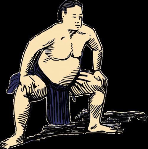 japan people sumo