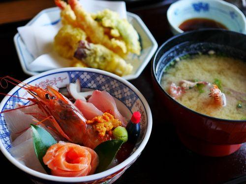japanese food japan food sashimi