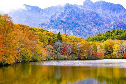 japan togakushi autumnal leaves