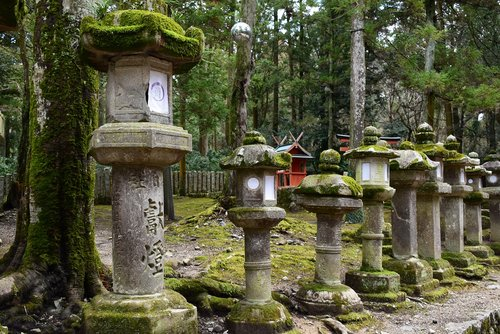 japan  nara  stone lantern