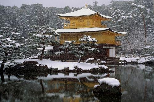 Japonija,šventykla,sniegas,sniegas,religija,tikėjimas,žiema,tvenkinys,vanduo,medžiai