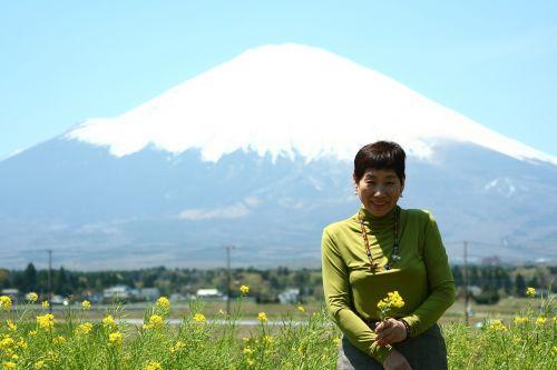 japanese fuji rape blossoms