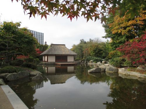 japanese teahouse in hamburg planned and blomen