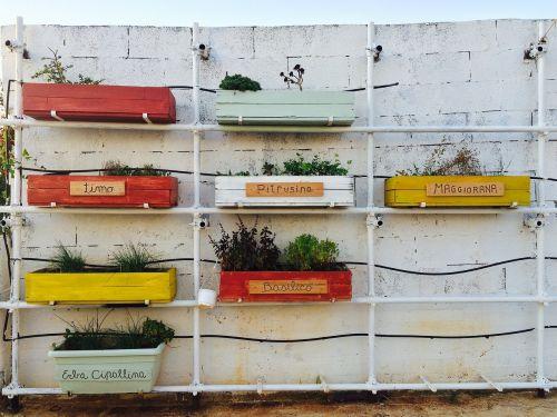 jardiniere aromatic plants vintage