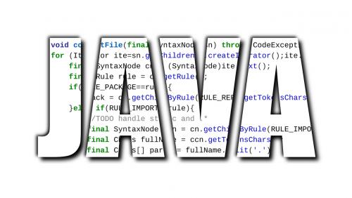 java software software development