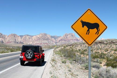 jeep  wrangler  car