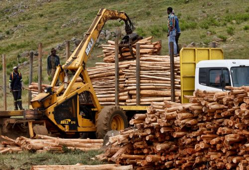 job work logging