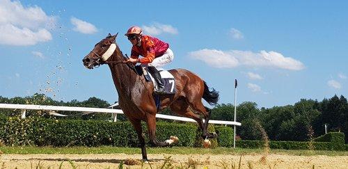 jockey  horse racing  racecourse