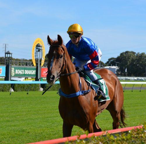 jockey hors race