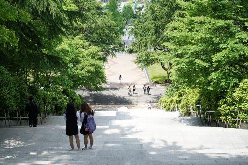 joe chosun university