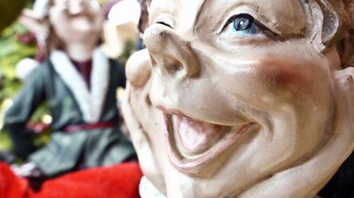 Joyful Elf Face