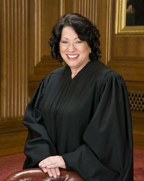 judge court justice