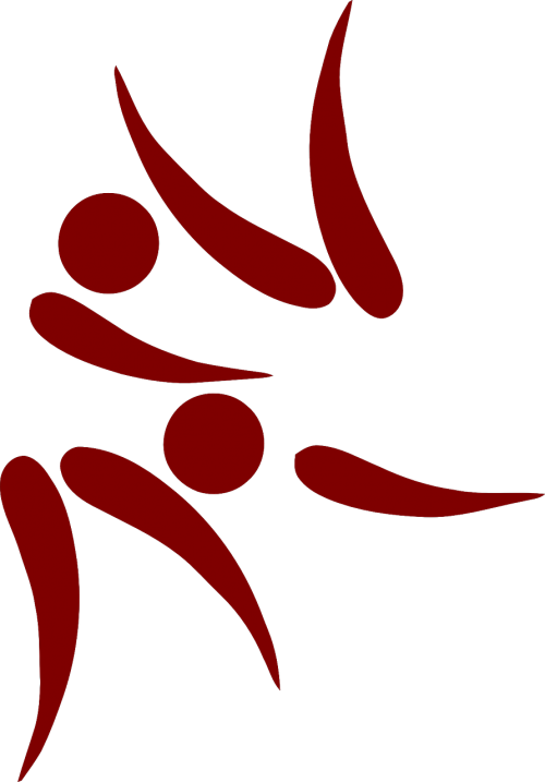 judo logo icon