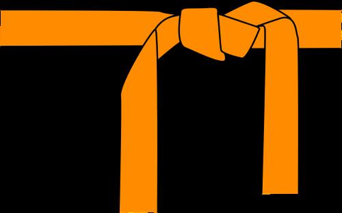 judo karate belt