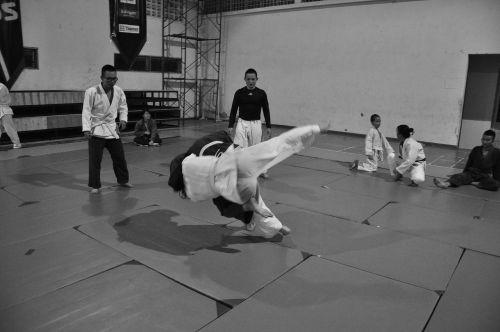 judo martial arts combat