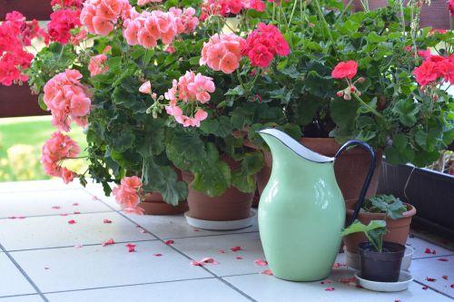 jug metal pitcher pitcher