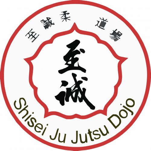 jujutsu sports martial arts