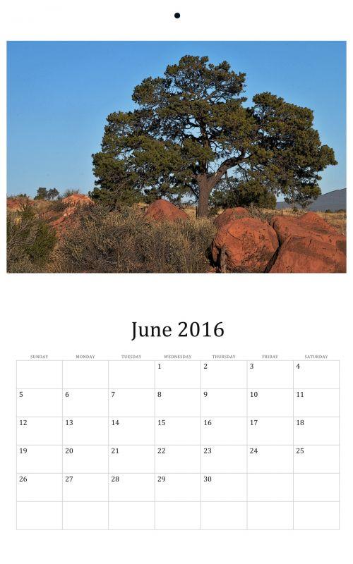 June 2016 Wall Calendar