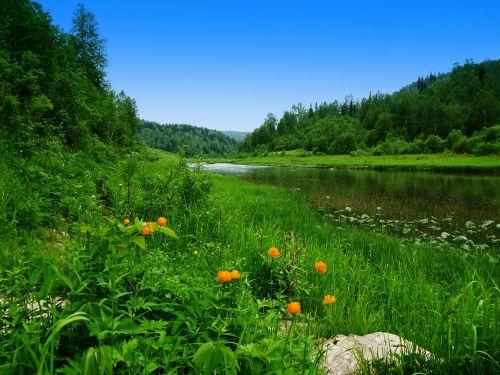 june river siberia