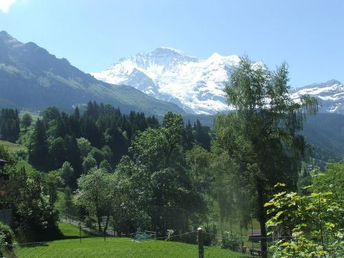 jungfrau mountain summer