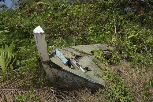 jungle lost stranded