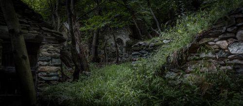 jungle ruin ruins