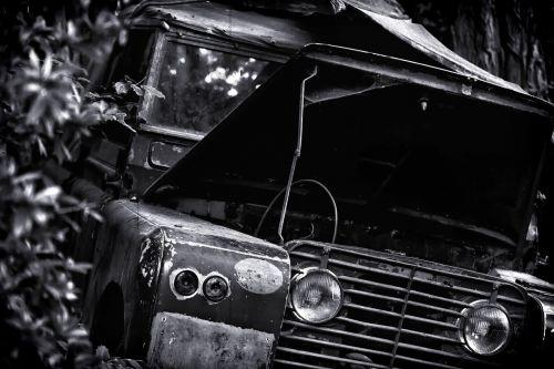 jungle auto lost