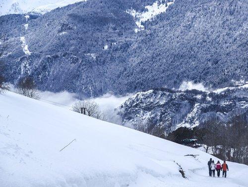 jura  fir  snow