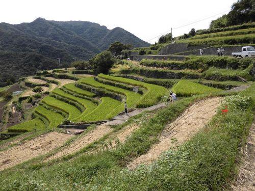 kagawa prefecture shodoshima zhongshan thousand hirata