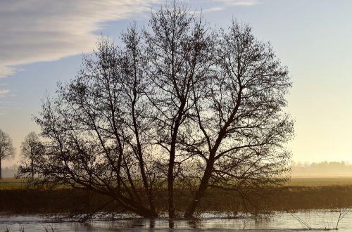 kahl winter twilight