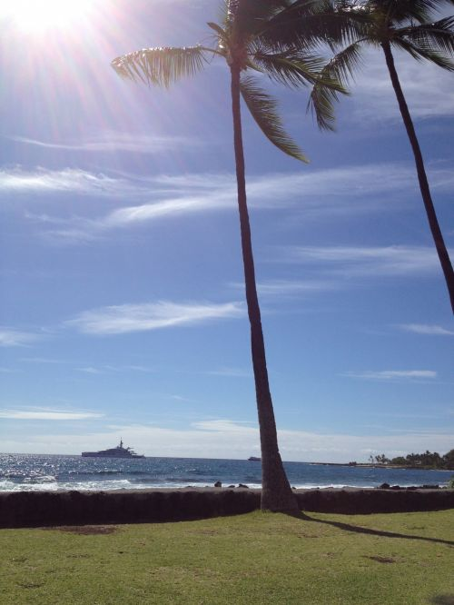 Hawaii, gražus, saulės šviesa, vandenynas, atogrąžų, delnas, kailua kona hawaii